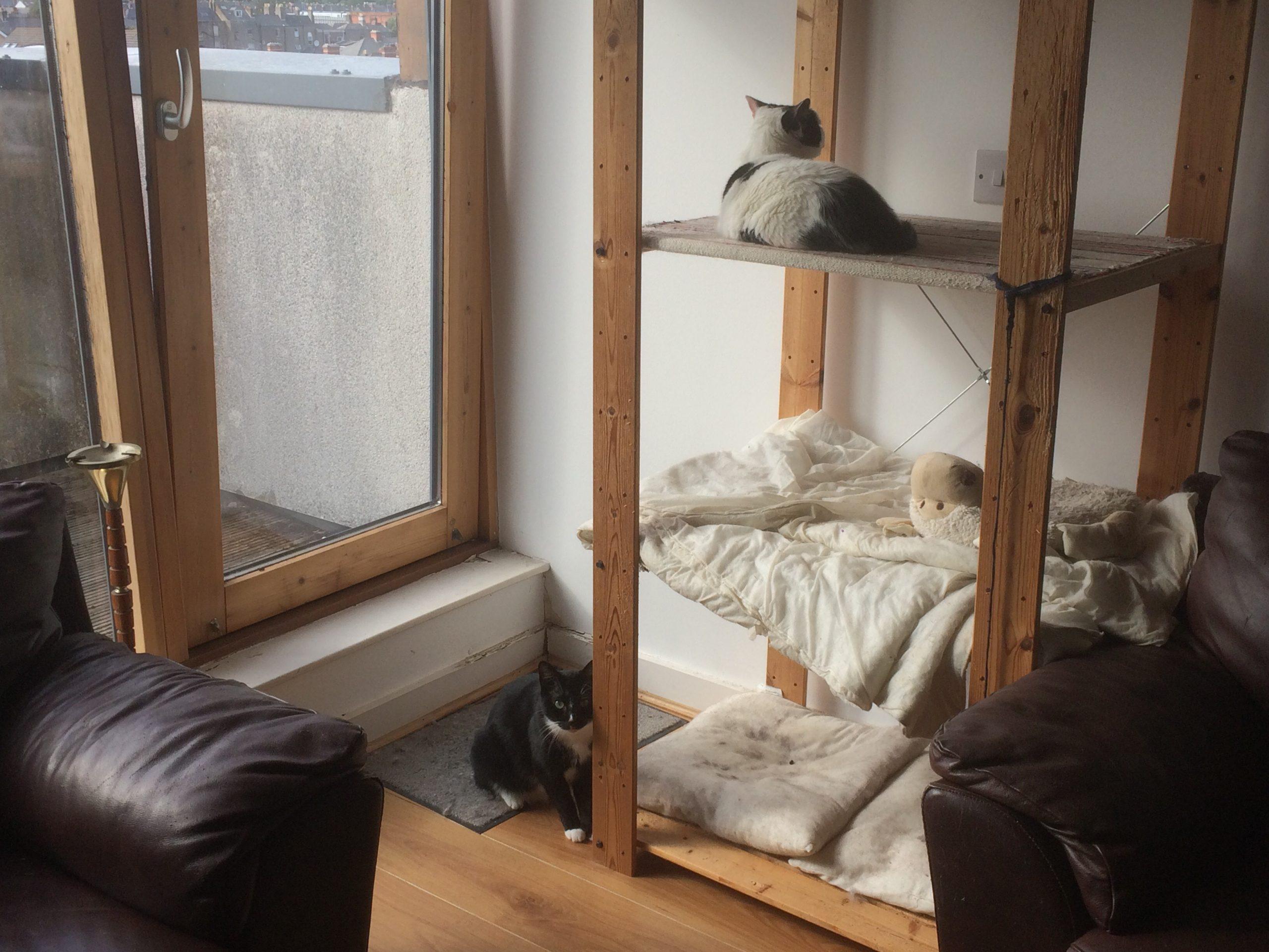 Catification – Ikea Hack Cat Tree
