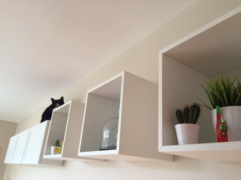 Ikea products that make great cat items – Part 2