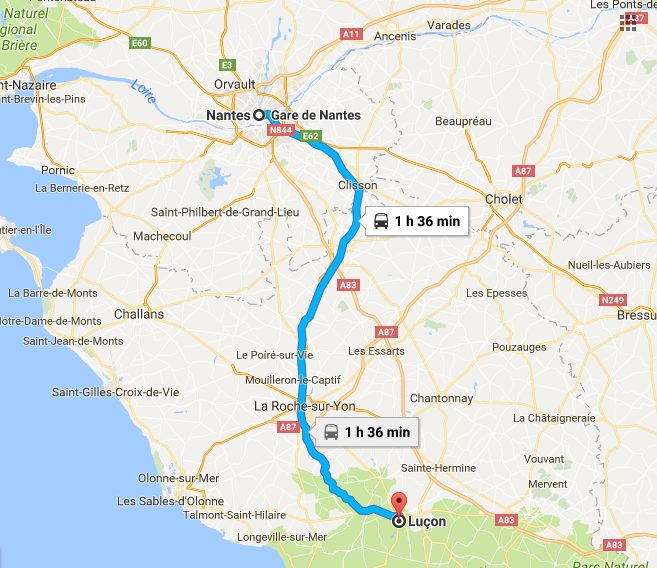 Cat sitter on holiday – France!