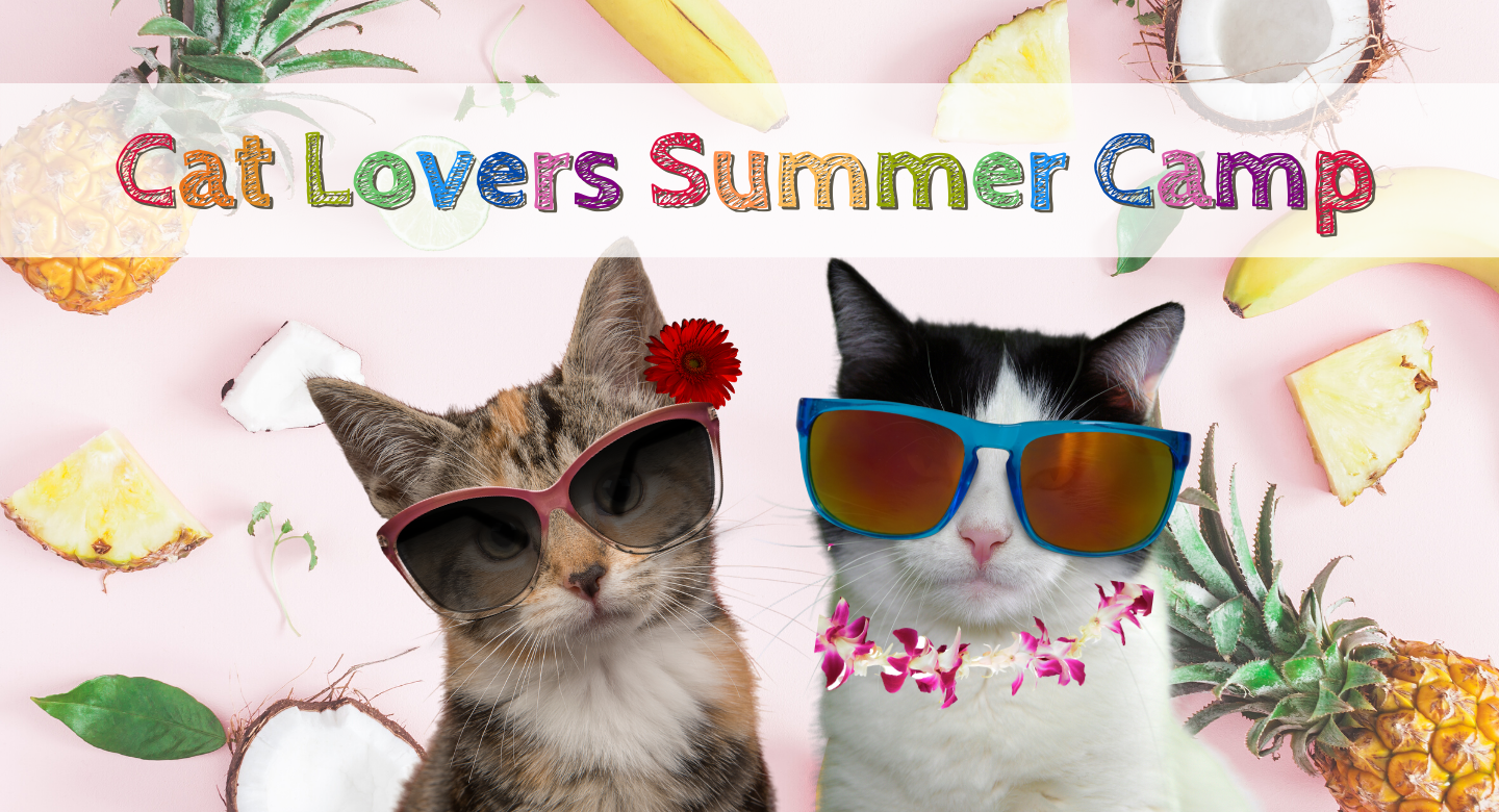 Cat Lover Summer Camp